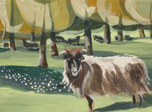 Owca z Giebułtówka